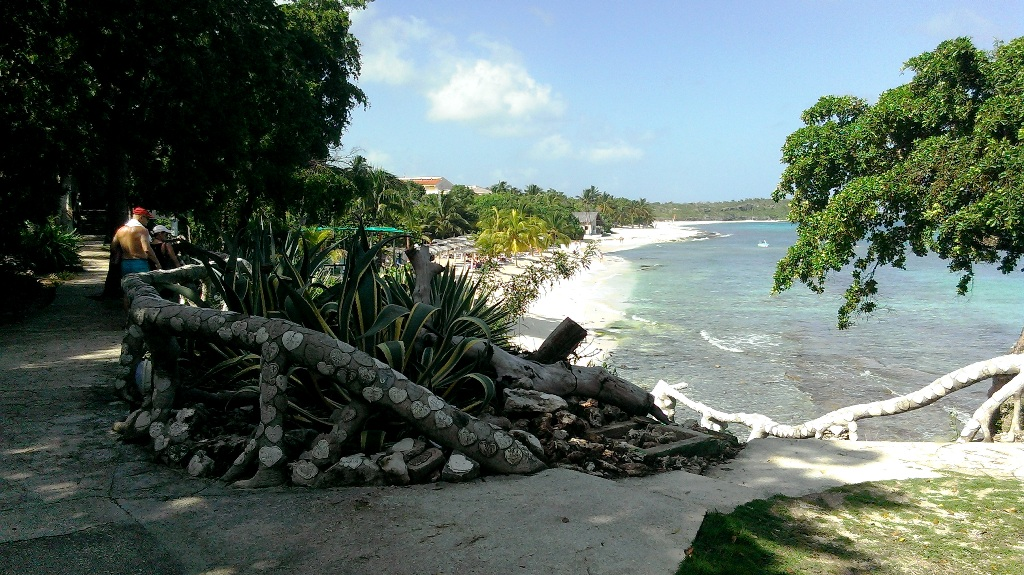 Vacations in Paradise – 5-Star Paradisus Rio de Oro Hotel in Holguin in Cuba